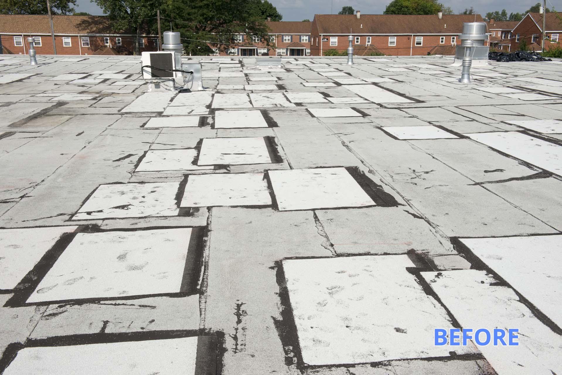 Roof Restoration Before
